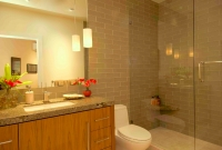 Guest bath 1, glass tile